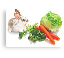 Bunny Banquet Canvas Print