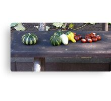 Still Life on a Bench Canvas Print