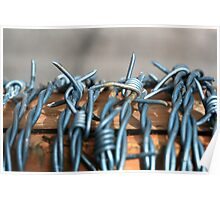 Barbed wire on a roll - close up shot Poster