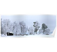 Winter landscape - Sweden Poster