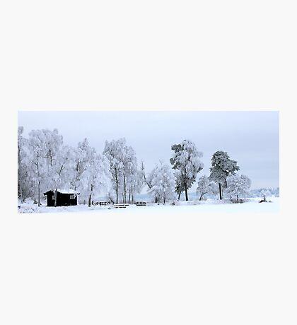 Winter landscape - Sweden Photographic Print
