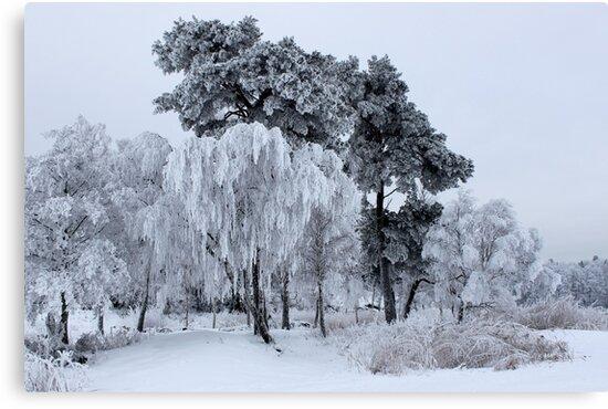 Silken painting - winter by LadyFi