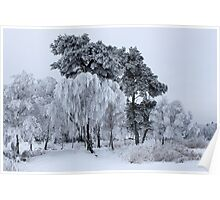 Silken painting - winter Poster