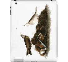 Brown Titlark (now American Pipit) iPad Case/Skin