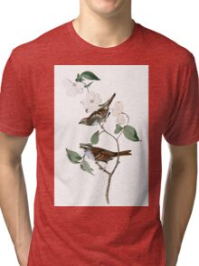 White throated Sparrow Tri-blend T-Shirt