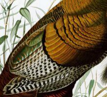 Wild Turkey Sticker