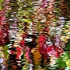 Japanese Water Garden by richman