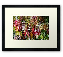 Japanese Water Garden Framed Print