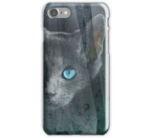 Kitty at the Window iPhone Case/Skin