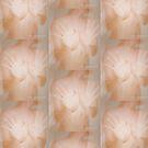 Shower Gloss © Vicki Ferrari by Vicki Ferrari
