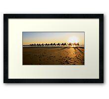 Cable Camels Framed Print