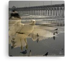 Gull Pier Canvas Print