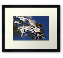 She Blooms in White Framed Print