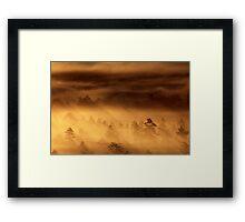 14.8.2015: Summer Morning in Torronsuo National Park III Framed Print