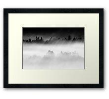14.8.2015: Summer Morning in Torronsuo National Park VII Framed Print