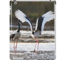 Sunset Bill Clacking iPad Case/Skin