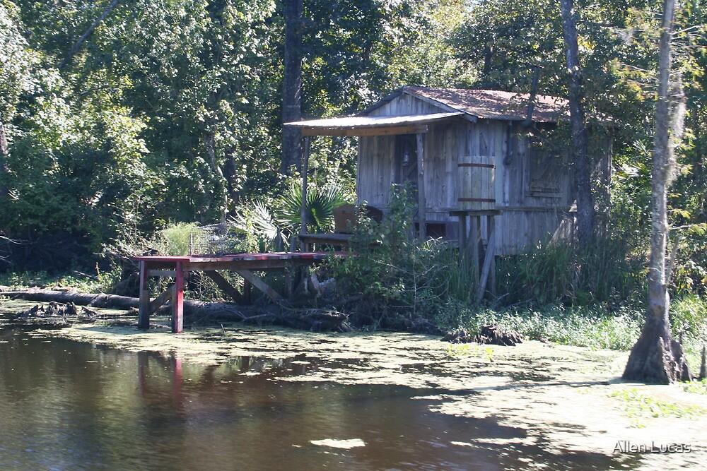Welcome to da swamp by Allen Lucas