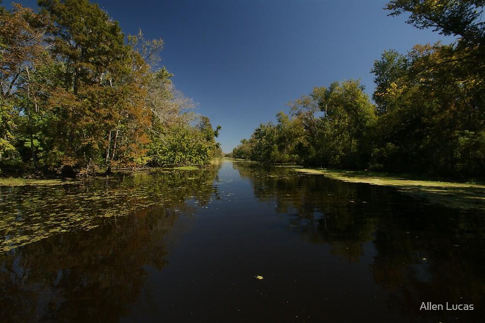 Swamp Canal by Allen Lucas