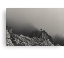 Last man standing Canvas Print