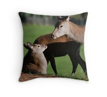 Doe & Young  Throw Pillow