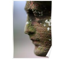 A Face in Stone Poster