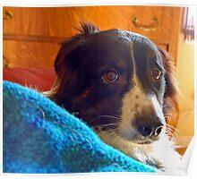 Cozy Boy Odin Poster