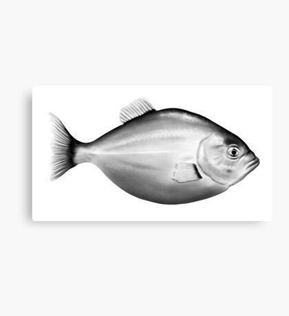 Monochrome Fish Canvas Print