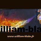 ASSOCIATION WILLIAM BLAKE -FRANCE - by Andre  Furlan