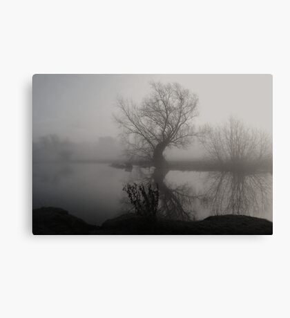 In The Mist Canvas Print