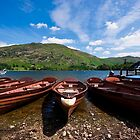 Rowing Boats by taffspoon