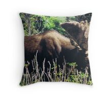 Moose on Cabot Trail in Nova Scotia Throw Pillow