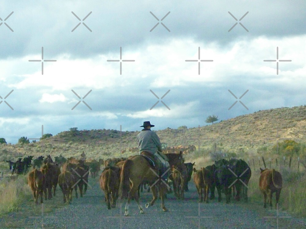 Cattle Drive  by Betty  Town Duncan