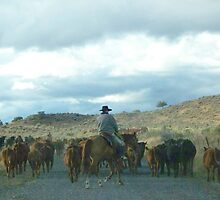 Cattle Drive  by BettyEDuncan