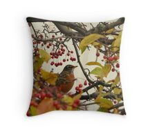 Robin During Fall Migration Throw Pillow