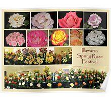 Illawarra Rose Festival 2010 Poster