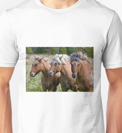 Three Kings T-Shirt