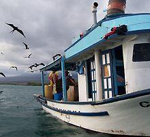Galapagos Fisherman Attacked by Frigid Birds by Nina Brandin