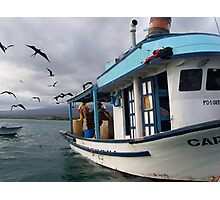 Galapagos Fisherman Attacked by Frigid Birds Photographic Print