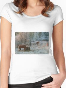 Frosty Morning Women's Fitted Scoop T-Shirt