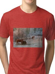 Frosty Morning Tri-blend T-Shirt