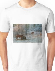 Frosty Morning T-Shirt