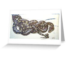 Celtic Trouser Python Greeting Card