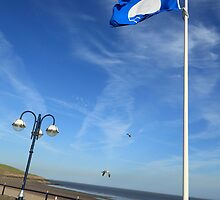Blue Flag, Barry Island by Christopher Ware