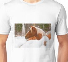 Equine Prince Unisex T-Shirt