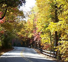 Mountain Road in Autumn by Gordon Taylor