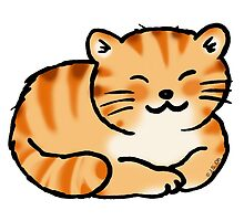 Sleeping orange & white pussy cat by CuteCartoon