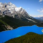 Peyto Lake by Justin Atkins