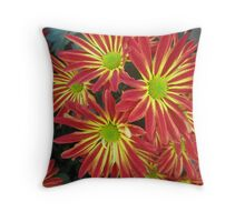 Colorful Mums Throw Pillow