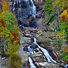 Autumn At The Falls by Roger Jewell