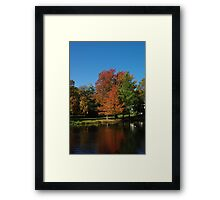 Orange Tree at Water Framed Print